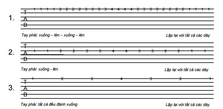 Bán đàn guitar giá rẻ ở tphcm 8.PNG