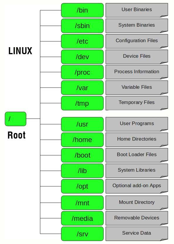 cay-thu-muc-trong-linux.jpg