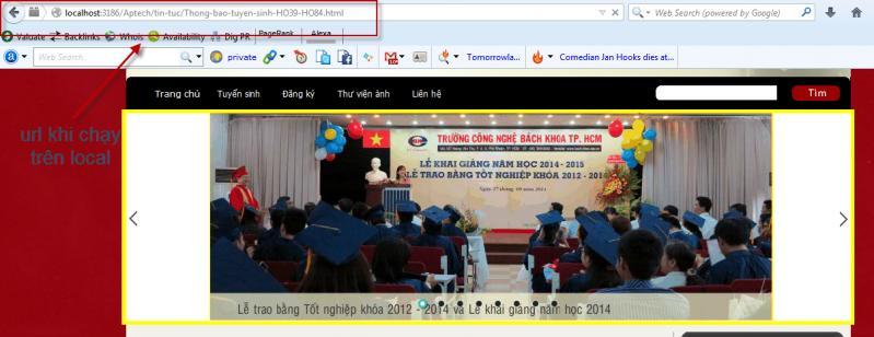 rewite-url-asp.net-2.jpg