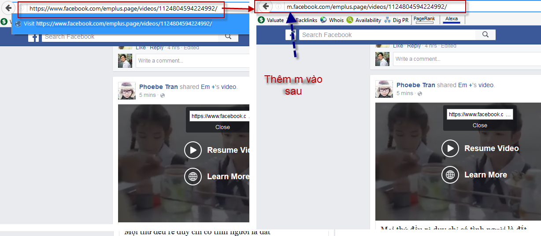 them-chu-m-vao-sau-video-can-download.png